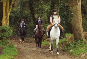 horses children